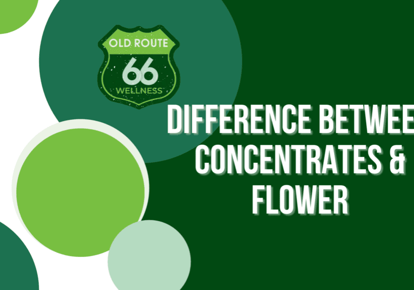 Difference between Concentrates and Flower